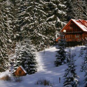 Зимние фото 26