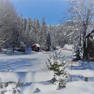 Зимние фото 14
