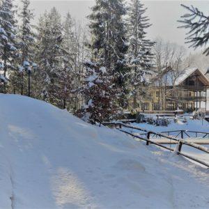 Зимові фото 8