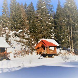 Зимние фото 17
