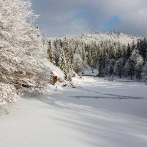 Зимние фото 9