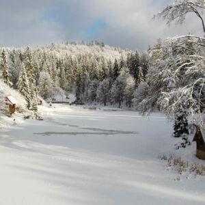 Зимние фото 10