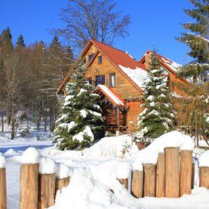 Зимние фото 35