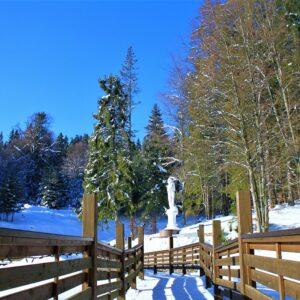 Зимние фото 38