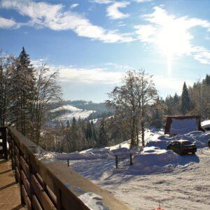 Зимние фото 39