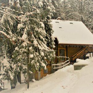 Зимние фото 19