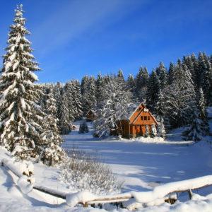 Зимові фото 1