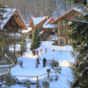 Отдых в Карпатах Зимой 28
