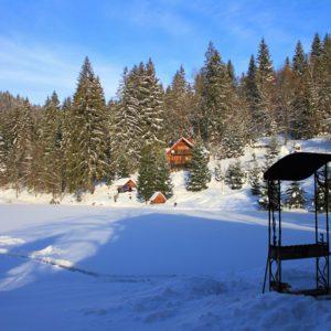 Отдых в Карпатах Зимой 29