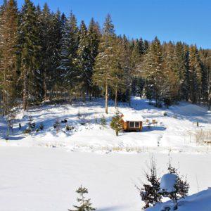 Отдых в Карпатах Зимой 34