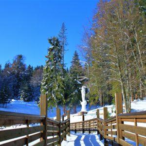 Отдых в Карпатах Зимой 35