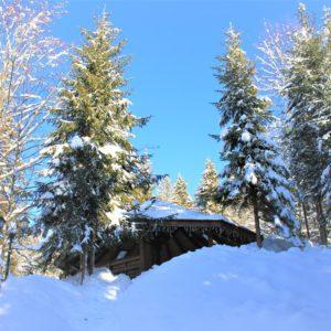 Отдых в Карпатах Зимой 37