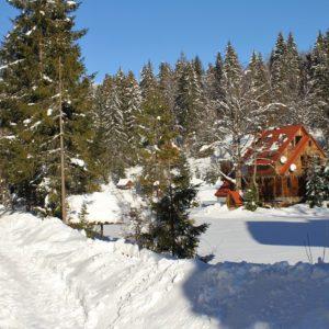 Отдых в Карпатах Зимой 38