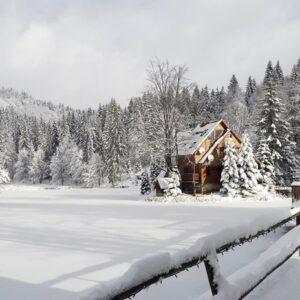 Зимові фото 37