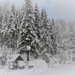 Зимняя казка — 2017 2