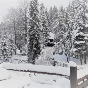 Зимняя казка — 2017 3