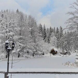 Зимняя казка — 2017 4