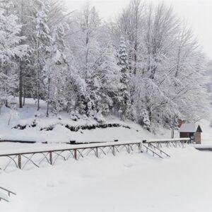 Зимові фото 32