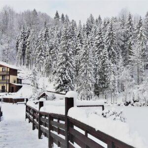 Зимові фото 31