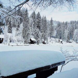 Зимові фото 30