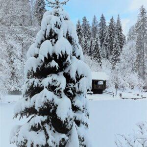 Зимняя казка — 2017 11