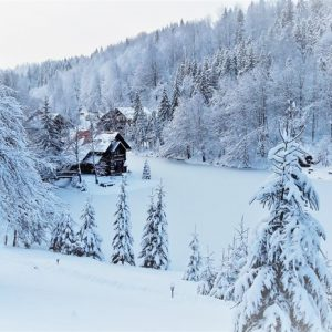 Зимняя казка — 2017 17