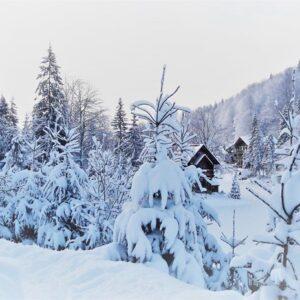 Зимові фото 16