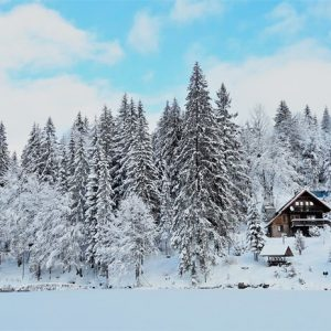 Зимняя казка — 2017 24
