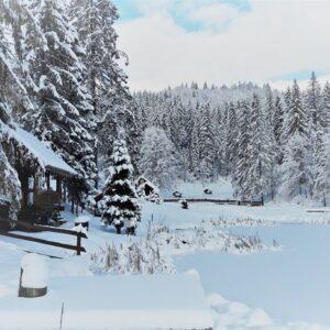 Зимняя казка — 2017 25