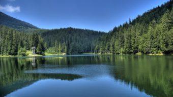 «Озеро Vita» попало в номинацию «Лучший туристический комплекс» премии «Carpathian travel awards»