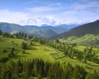 Отдых в горах в Карпатах: цены, отзывы, фото
