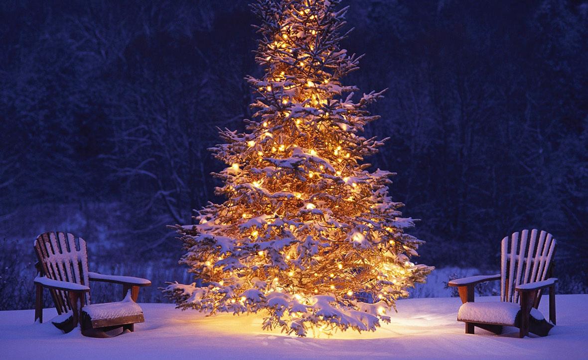 Новый Год и Рождество в Карпатах 2022 1